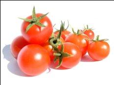 k,NTU1NzQwNDIsODkyMDEx,f,pomidor